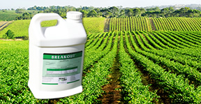 HUMA GRO® Liquid Agricultural Products