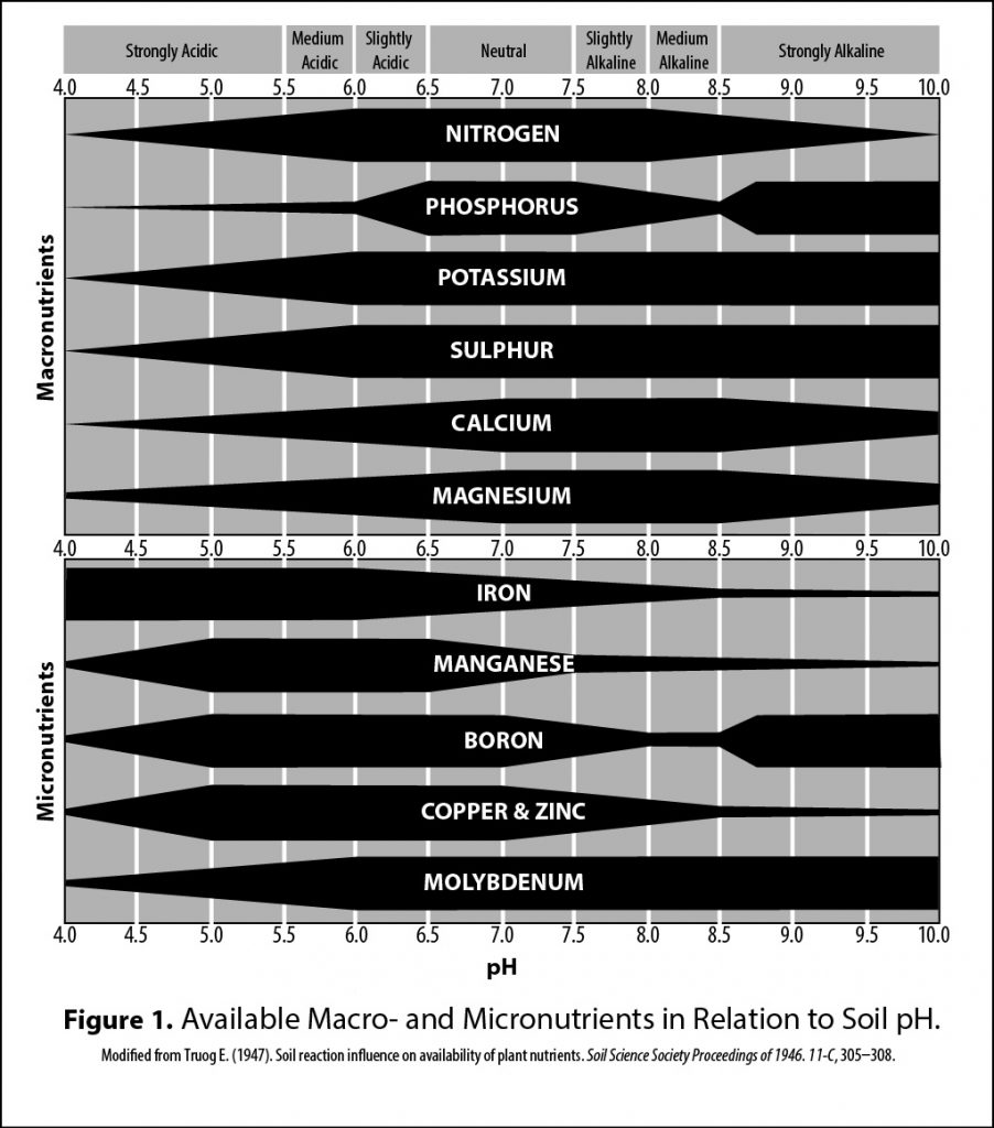 Chart of available macronutrients and micronutrients in relation to soil pH